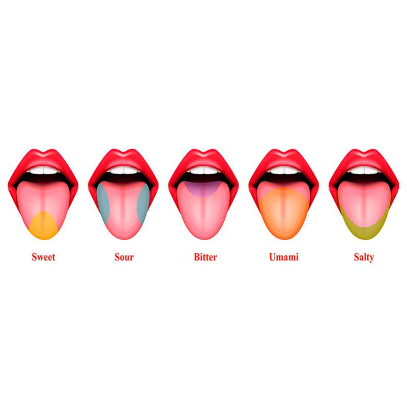 lengua vellosa negra
